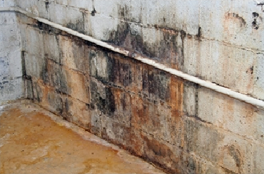 Picture of a basement wall with mold and signs of water damage